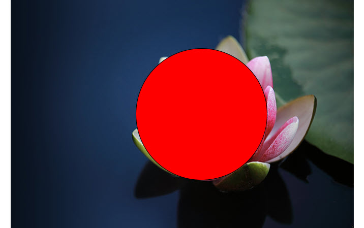 how to crop a picture into a circle using photoshop